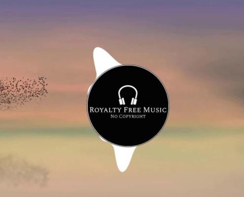 Beijaflor - Royalty Free Music