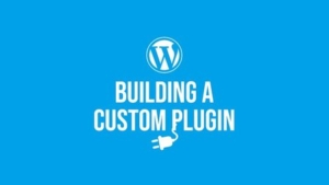 Building a WordPress custom plugin to use your own codes - instead using the theme's functions.php